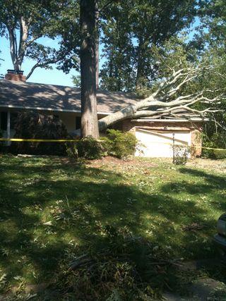Storm Damage 2011
