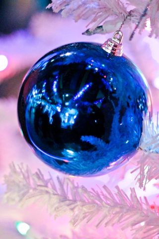 Christmas Ornament - Blue (1 of 1)