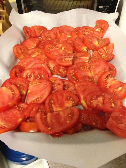 What To Do with ALL of Those Tomatoes
