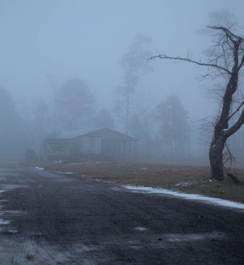 Fog_7-1