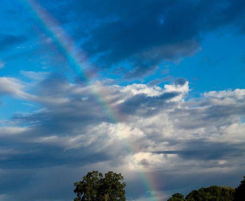 Rainbow 1-1