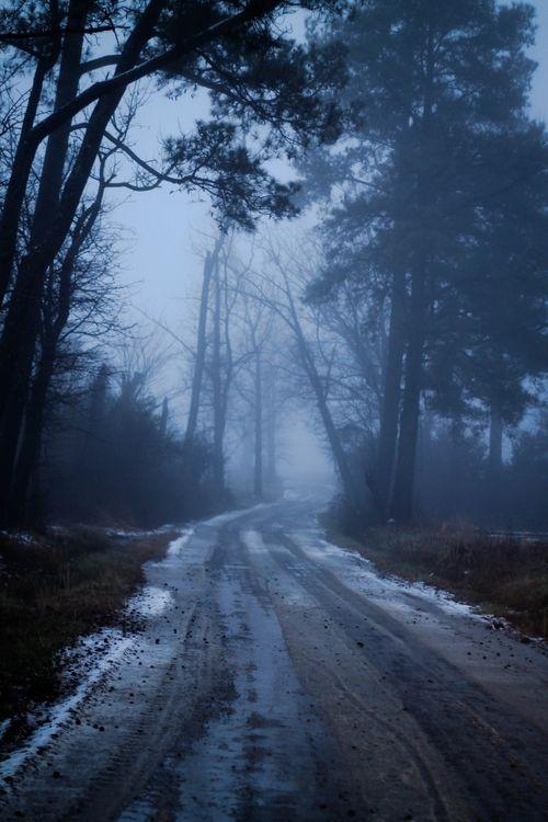 Fog_9-1