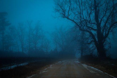 Fog_13-1