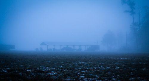 Fog_14-1
