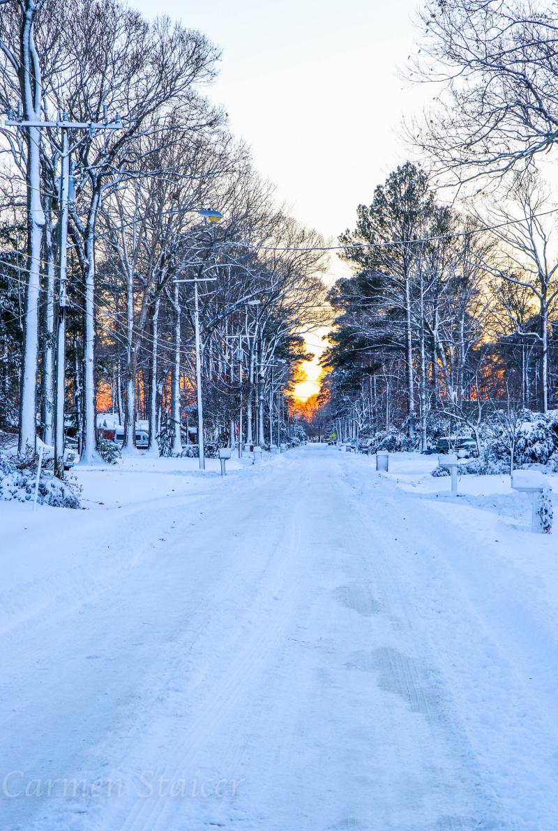 Snowmageddon-46